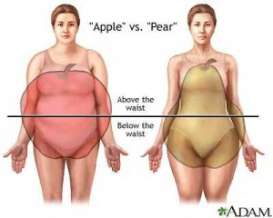 Pear-and-Apple-Body-Shape_optimized-300x240