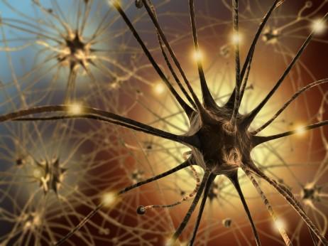 neuron21